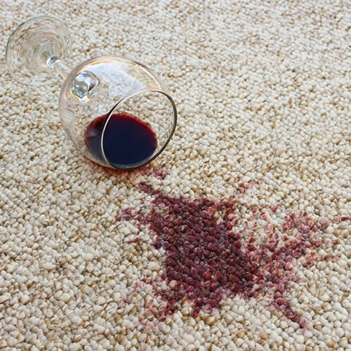 Spilled drink on Carpet | Pilot Floor Covering