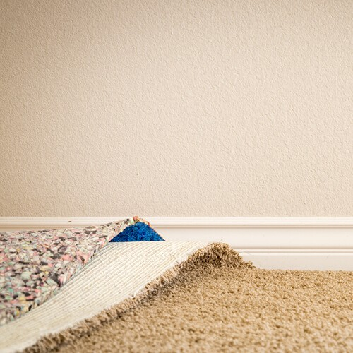 Carpet installation | Pilot Floor Covering